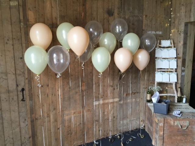 single latex balloons pearlised clear individual